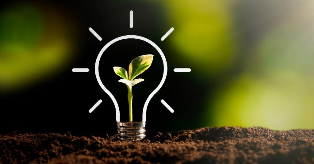 Une ampoule plantée dans la terre est dessinée avec une petite pousse de plante verte à l'intérieur.