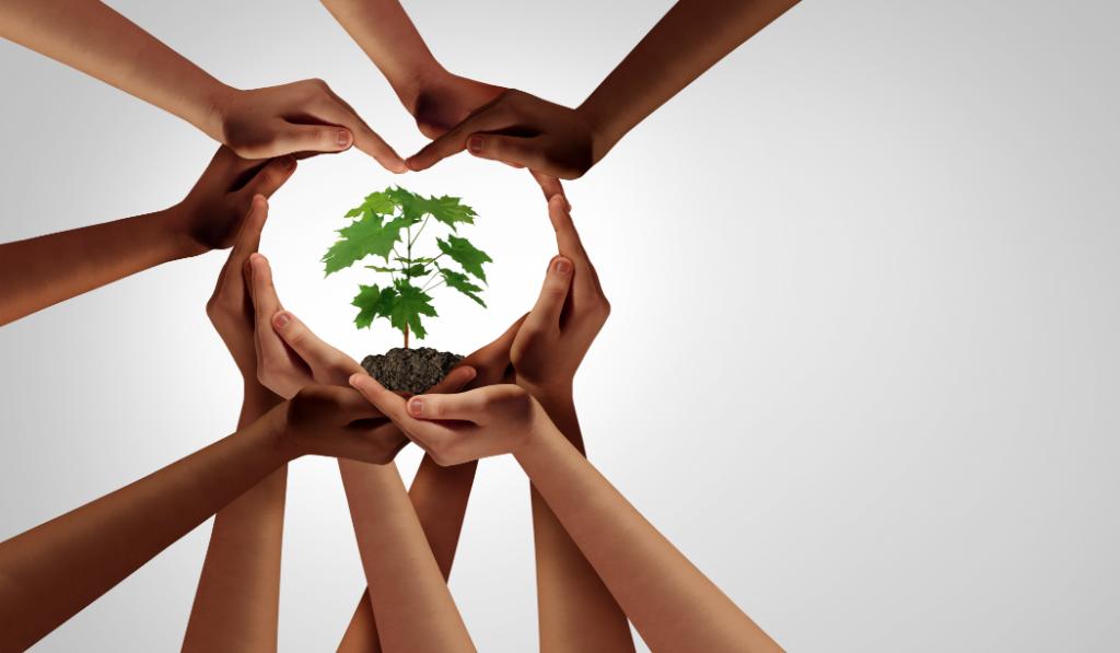 plusieurs mains forment un cœur en se joignant. A l'intérieur de celui-ci se trouve une petite plante verte.